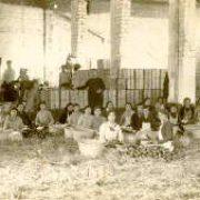 mujeres en almacen de naranjas de Castello